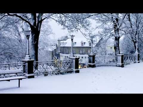 Harrogate Town Centre Stray - Winter Snow Scenes and Christmas Cards...