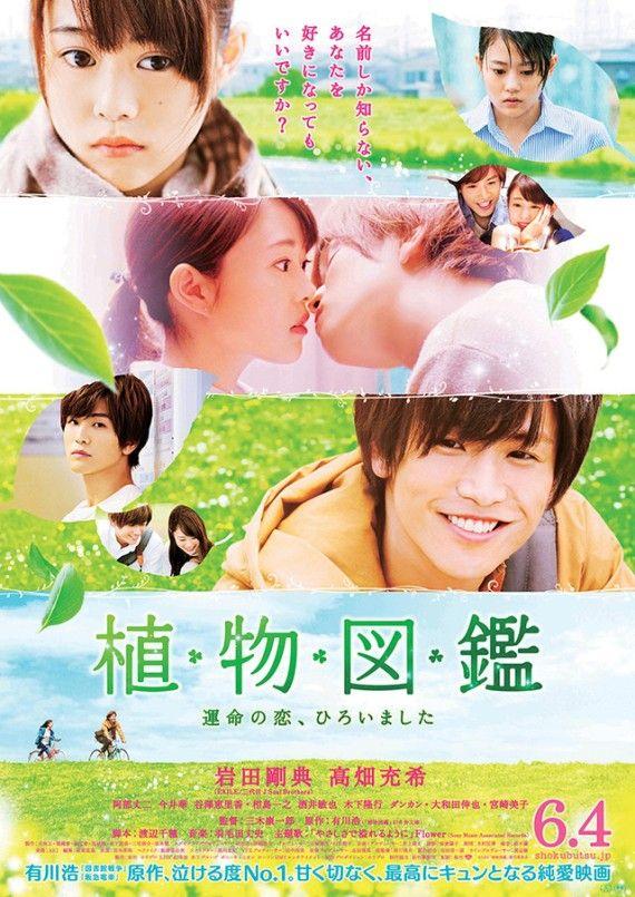 Sinopsis Evergreen Love / Shokubutsu Zukan / 植物図鑑 (2016