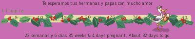 37 semanas de gestacion
