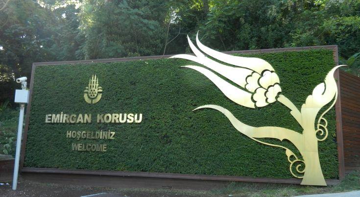 Isztambul legnagyobb közparja az Emirgán Park. Itt rendezik minden év áprilisában a tulipán fesztivált.