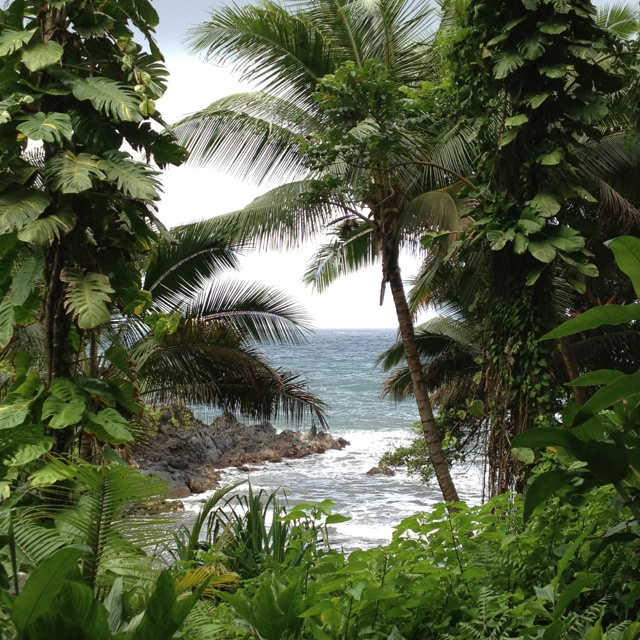 17 Best Images About Hawaii The Big Island On Pinterest Peter Lik Fairmont Orchid And Tropical