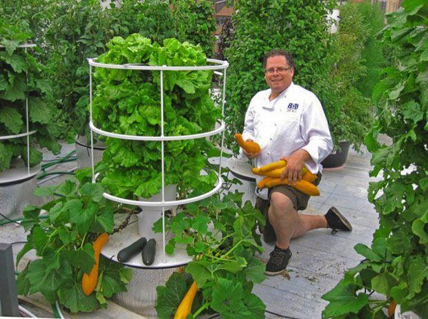Hydroponic Garden Tower