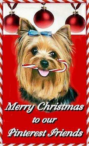 Merry Christmas everyone. xo