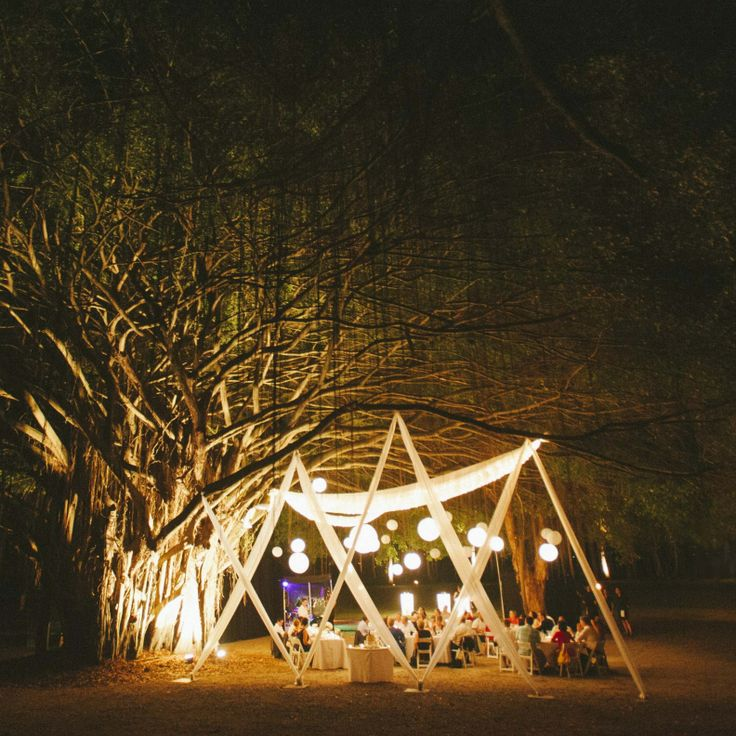 Under the fig tree, Rex Smeal Park, Port Douglas.  Styled by Eventcore