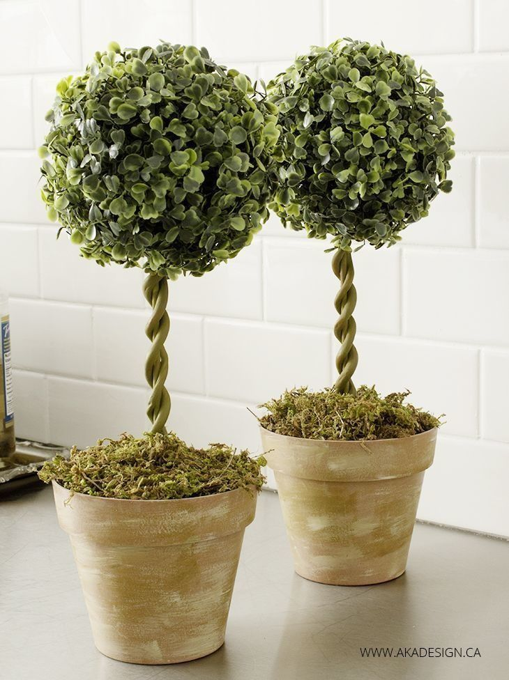 Topiary trees:  Fit and hot glue floral foam into pots. Insert a skewer stick in the middle of the foam. Glue the greenery ball. Paint the stick in a mossy green. Wrap modelling clay around the stick to appear like a vine. Paint the clay in same mossy green. Cover the top of the pot with moss.