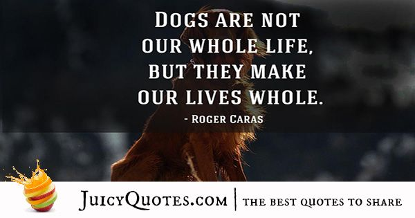 Quotes About Dogs - 40