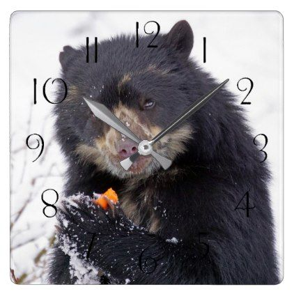 Spectacled bear square wall clock - photos gifts image diy customize gift idea