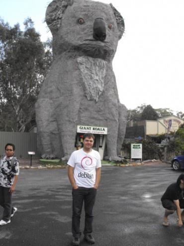 The Big Koala, Australia