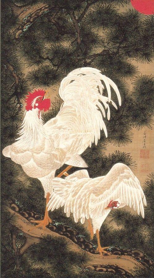 動植綵絵-11-老松白鶏図(ろうしょうはっけいず)