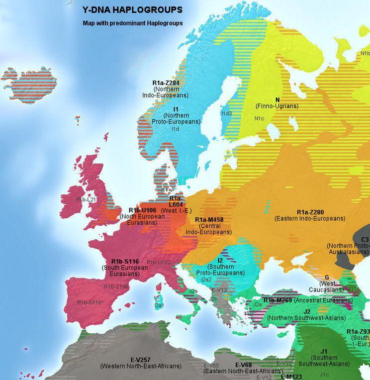 Główne haplogrupy Y-DNA w Europie