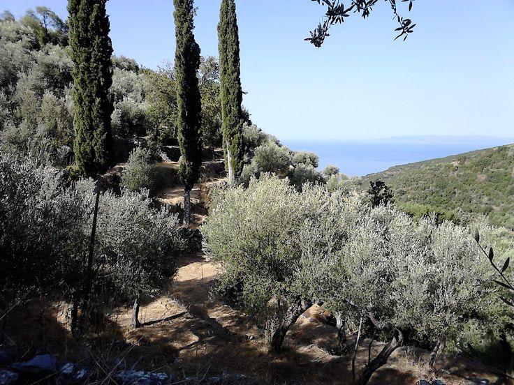 Mythical Mani Estate. View across the Messinian Gulf towards the Koroni Peninsular