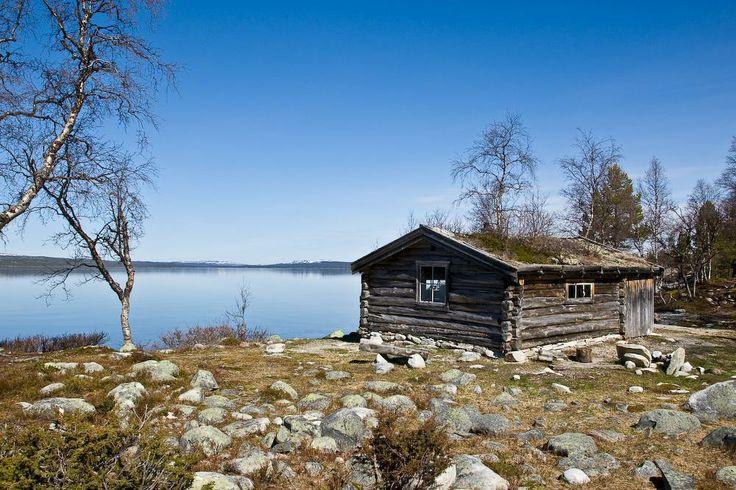 Femundsmarka National Park, Norway. www.inatur.no/fiske/5111787ae4b01fe6cf1f73e8/fiskekort-for-femundsmarka-nasjonalpark Inatur.no