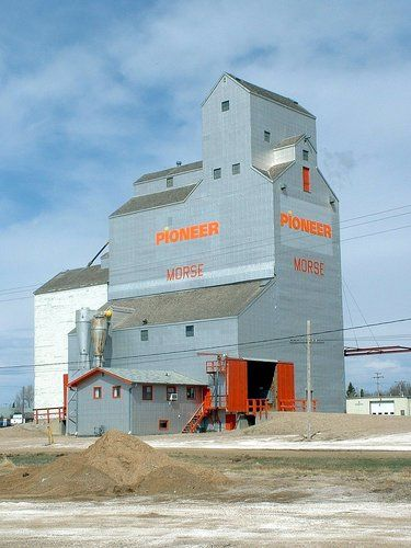 morse saskatchewan | Panoramio - Photo of Pioneer Elevator / Morse, Saskatchewan