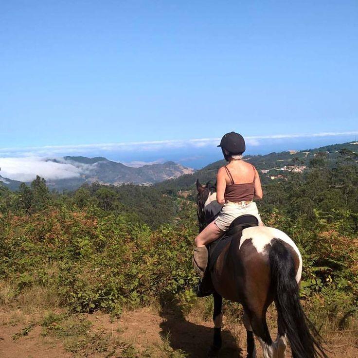 Vivaldi enjoying the sight! #horse #barefoot #Madeira #Madère #PontadeSãoLorenço #SantodaSerra