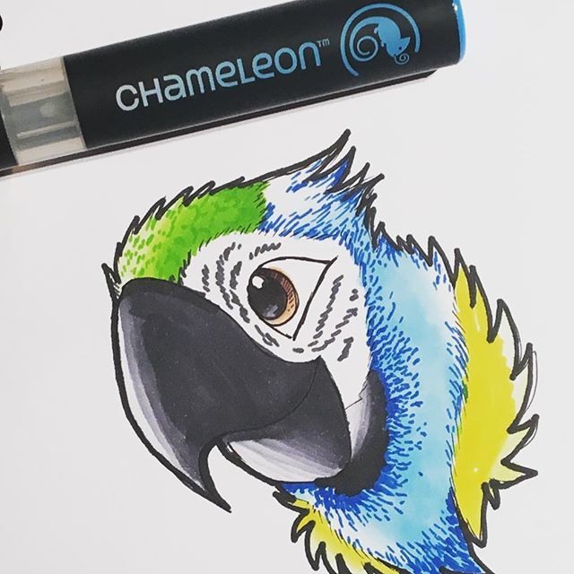 Love this colourful parrot created by @_love_draw__ with their Chameleon Pens.  #chameleonpens #draw #drawing #illustration  #parrot #colour #color #colouring #coloring #art #artwork #artist