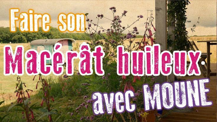 Les recettes de Mouune : MACÉRÂT HUILEUX AU CALENDULA / SOUCI