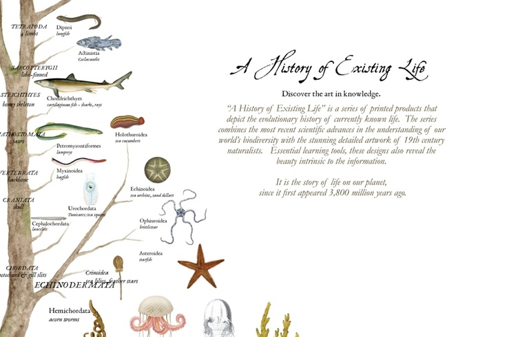 A History of Existing Life prints, cards & fieldguides