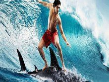 Wallpaper Facebook Cover Surf By Shark