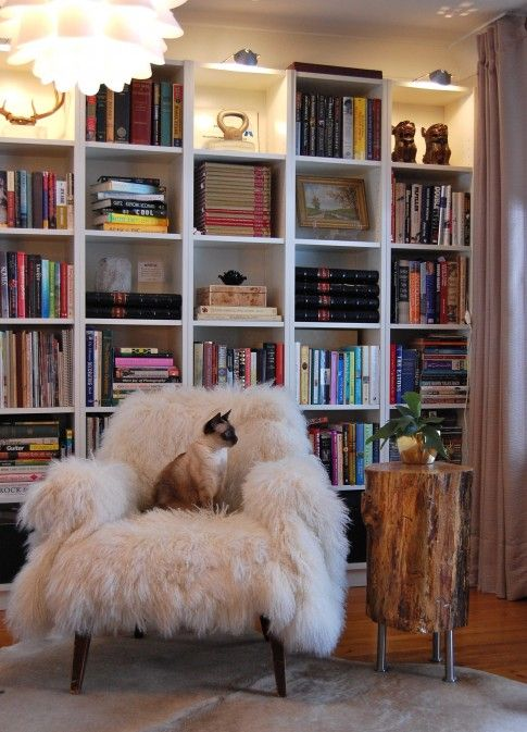 The bookcase, tree stump, cat and the fluffy chair?! What's not to love here? pretty awesome!