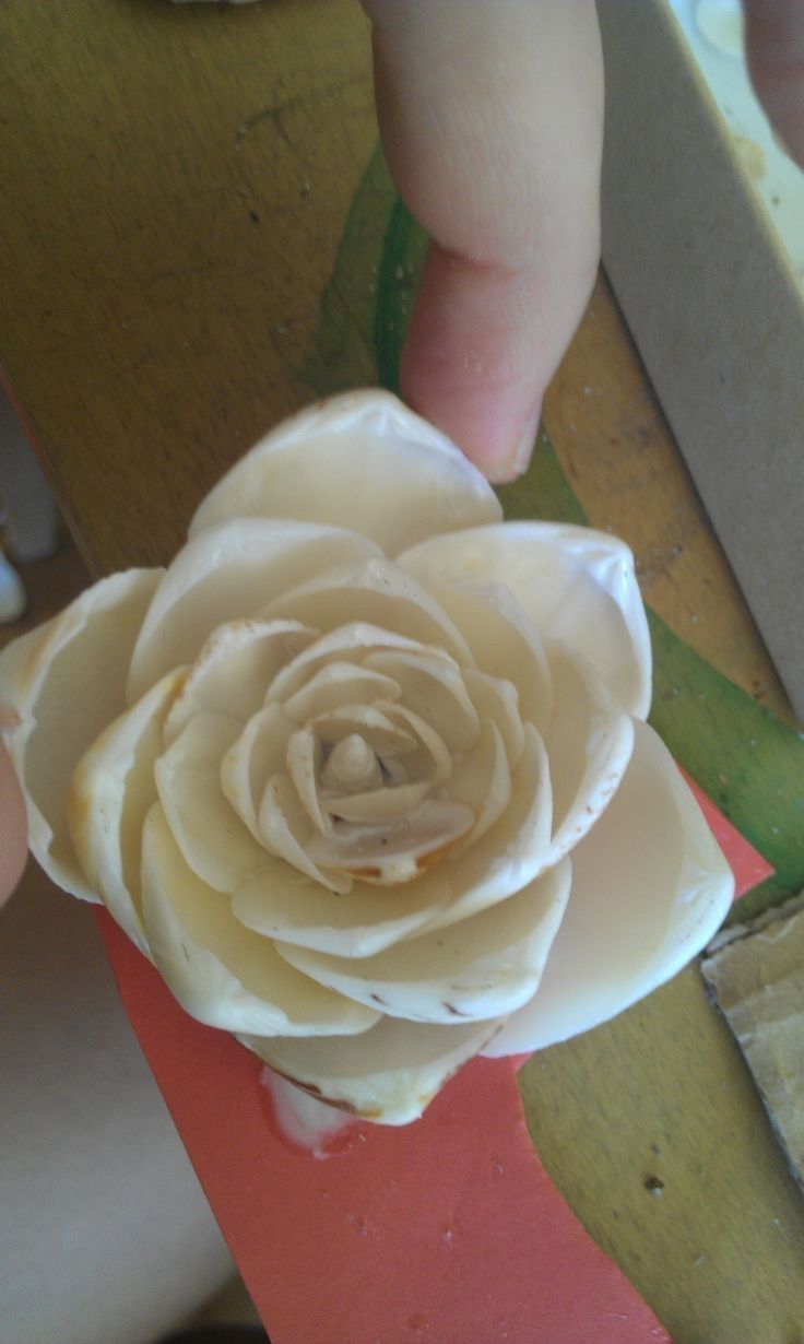 Shell Flower  •  Free tutorial with pictures on how to make a shell ornament in under 30 minutes