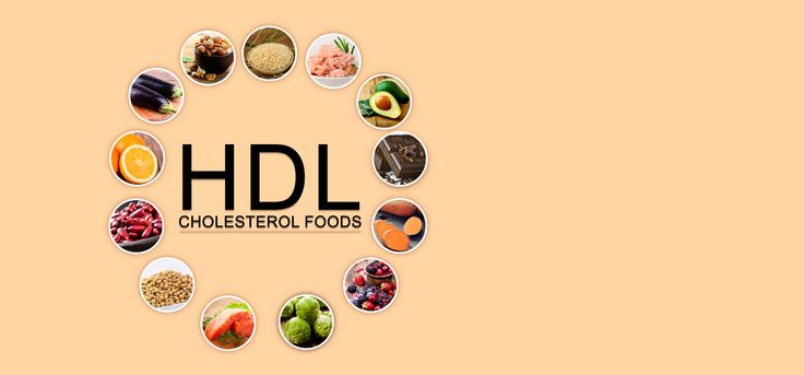 Do you have bad cholesterol? Does that make you feel apprehensive about your health? Here are 25 HDL cholesterol foods for you to include in your diet. Read on to know more