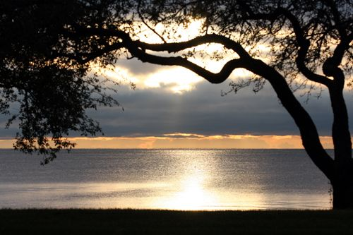 206 Best Grosse Pointe Images On Pinterest Michigan