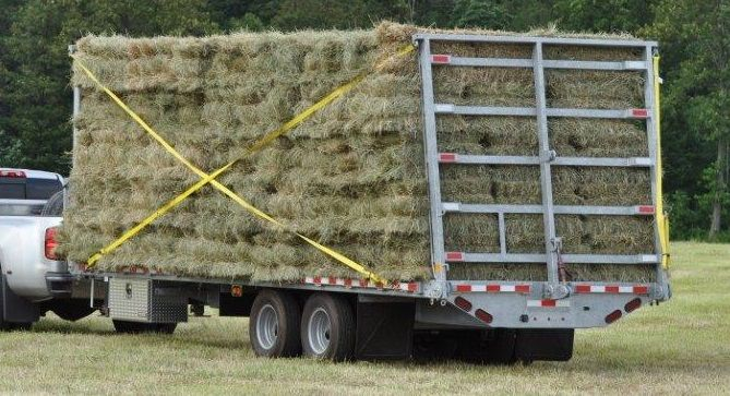 Small Square Hay Bales   Wagons for sale, Equipment for ...