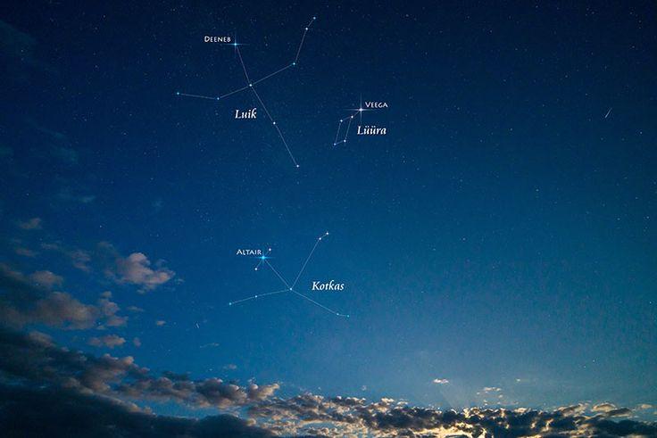Aquila constellation, the Eagle