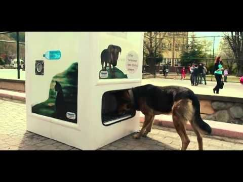 Street animals feeding produced for recycle pugedon