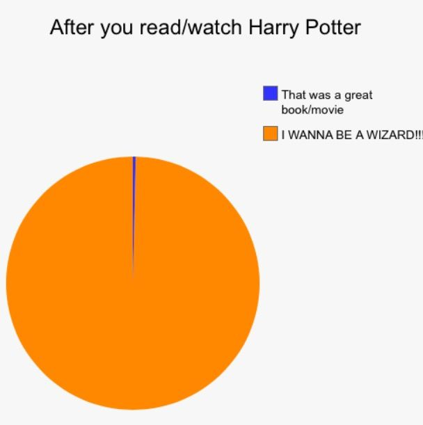 I WANNA BE A WIZARD!