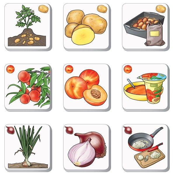 Pexetrio KIDS Poznáš ovocie a zeleninu?