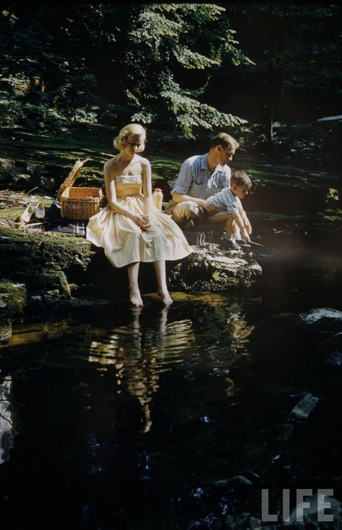 Lovely vintage picnic photo from LIFE. Or is this just Don and Betty Draper from Mad Men?