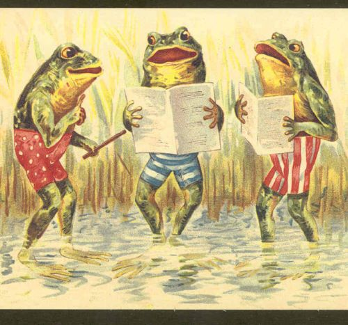 FANTASY FROG DIRECTOR WARMS UP POND CHORUS,MUSIC,FROGS REPRODUCTION POSTCARD