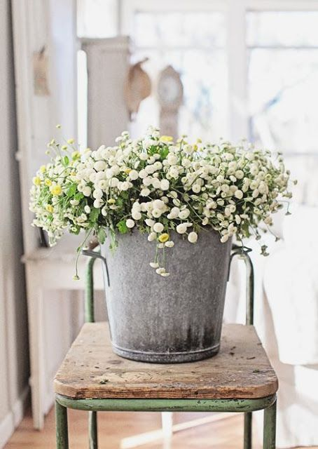 Charming farmhouse style galvanized pail of flowers on rustic wood chair. Spring inspiration/Easter decor/April mood board.