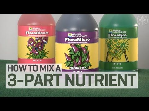 How To Mix a 3-Part Hydroponics Nutrient Solution | Just For Growers