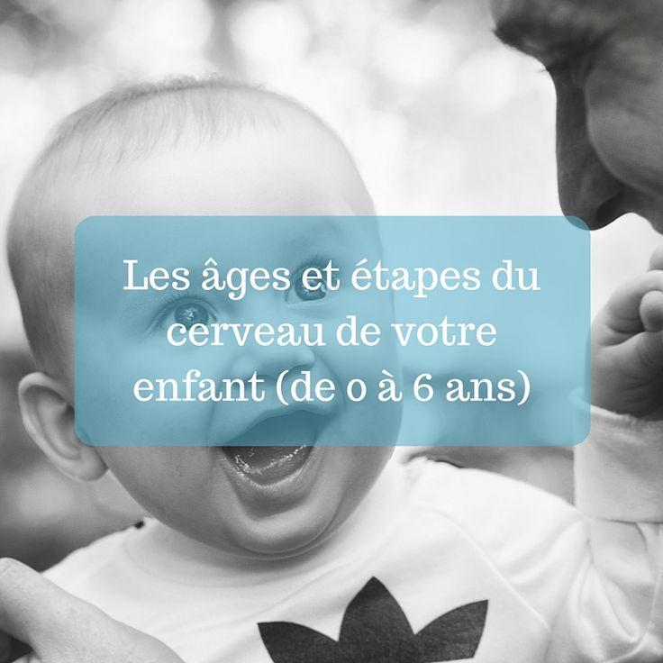 «Le cerveau de votre enfant» deDaniel Siegel et Tina Payne Bryson est un livre complet : accessible, humain et riche en conseils pratiques. Il s'impose comme un incontournable de la parentalité positive. Je vous propose d'en découvrir un précieux extrait avec les différentes étapes à respecter en fonction de l'âge de votre enfant afinde favoriser …