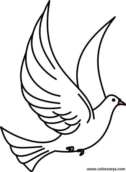Uçan Kuş Resmi Boyama 1