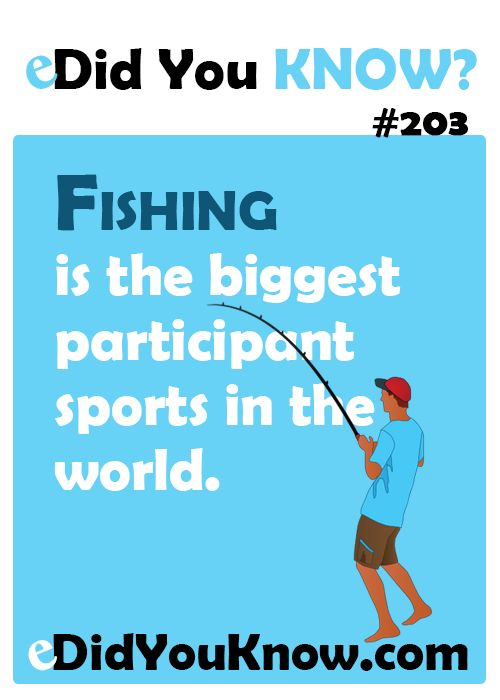 17 best images about did you know sports on pinterest for Interesting facts about fish