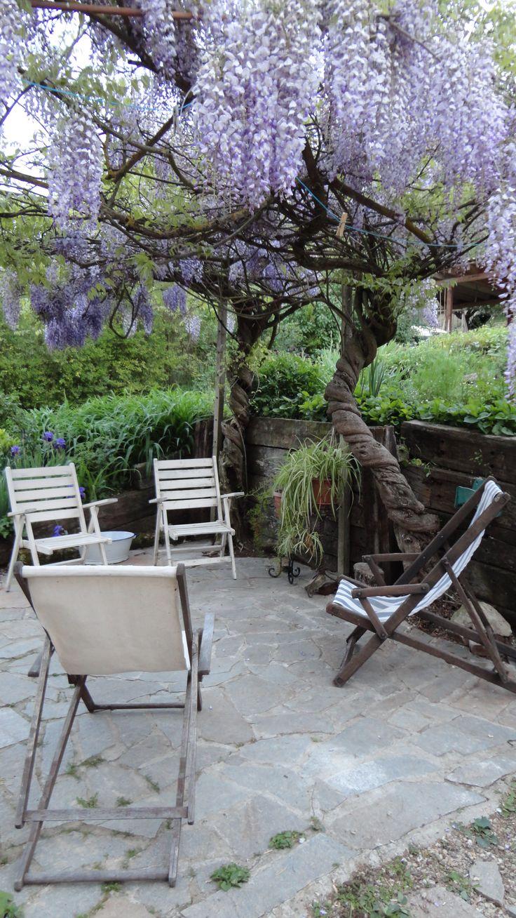 veranda sotto il piccolo glicine