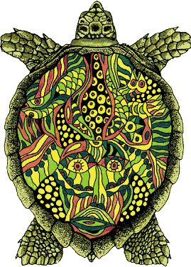 Painted Turtle Tattoo... Maybe in blue, purple, and green