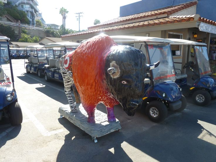 Some people drive cars and some people drive...well you know, golf carts and bison, of course.