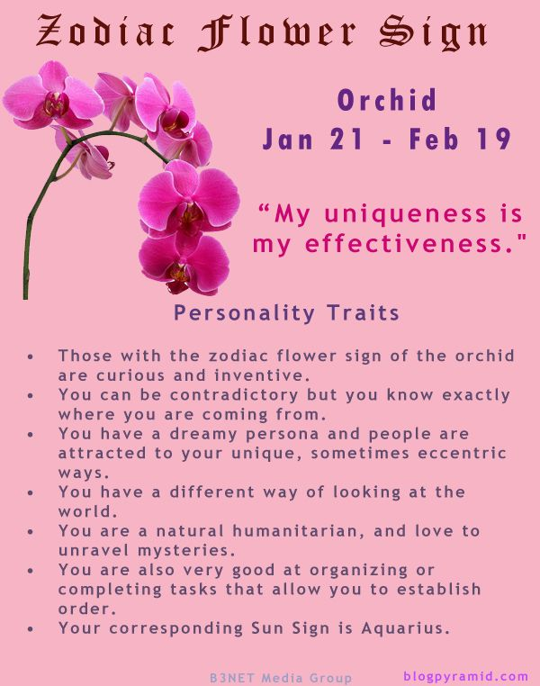 Divine Spark:  #Zodiac Flower Sign ~ Orchid January 21 - February 19 (#Aquarius).