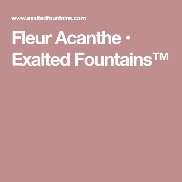 Fleur Acanthe • Exalted Fountains™