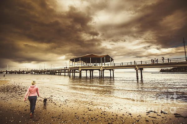Contrasted lifestyle imagery of a woman walking dog on stormy beach by large jetty. Taken Redcliffe, Queensland Australia by Ryan Jorgensen