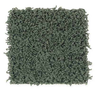 Mohawk Flooring's Cohesive Blend carpet in Parrot