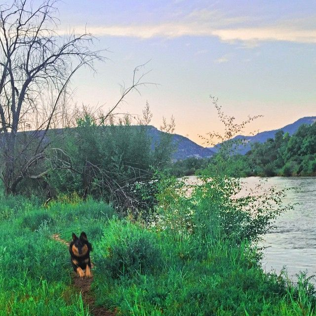 marvelous planning colorado vacation #3: Need help planning your Colorado vacation? Check out Durango, Colorado and  you wonu0027