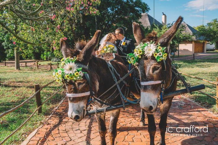 Zambezi Point Wedding Venue