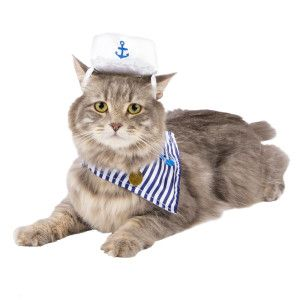 Best Sailor Costumes Ideas On Pinterest Sailor Halloween - Cat dressed in tiny sailors outfit becomes captain of russian cruise ship