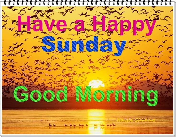 Good Morning Sunday Text Message : Have a happy sunday good morning mob img g �