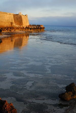 Ilha de Mozambique travel guide - Wikitravel